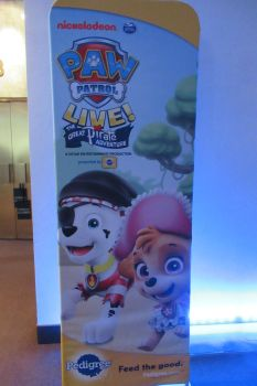 Paw Patrol Live The Great Pirate Adventure by Codetski101