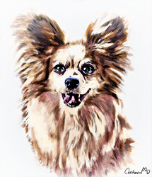 Watercolor Puppy Portrait for Our friend by Catifornia