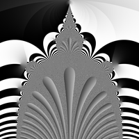 Frond Fractal (Phase) by pifactorial