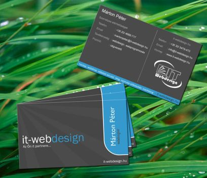 business card it-web by gergely7