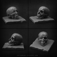 Skull, facial muscles by k0c0s