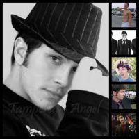 Toby Collage by hellhound249