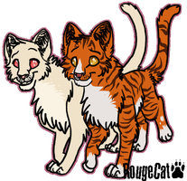 Snowpaw and Dustpaw by therougecat