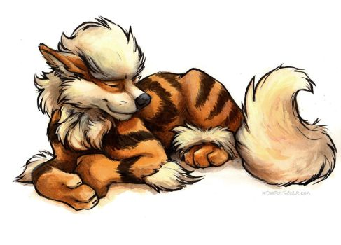 Sleepy Arcanine by kenket