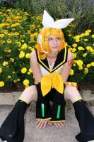 Kagamine Rin: Marigolds by SailorAnime