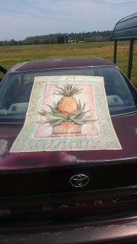 My Life in the Crimson Camry by anophthalmiaLXIX