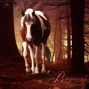 Baymount by frisbee-horseland