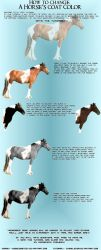 Tutorial- Horse Coat Color by ChibiElenor