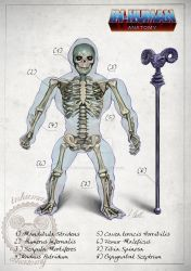 SKELETOR skeleton system anatomy by AlessandroConti