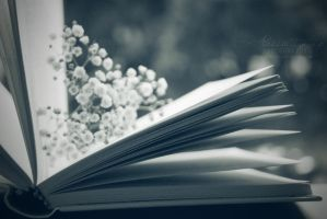 Enchanted Book by Alessia-Izzo