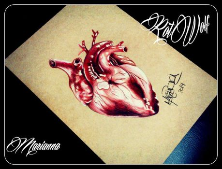 Heart by rotwolf93