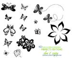 Butterfly Brushes JPG by golzy