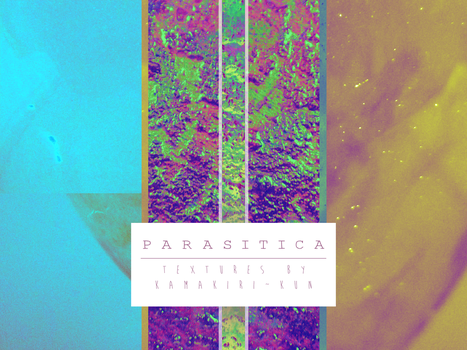 FREE TO USE TEXTURES ~ PARASITICA by kamakiri-kun