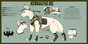 Charlie-Reference Sheet 2013 by Kitchiki