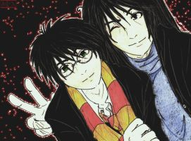 Harry and Sirius by MaopDin