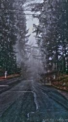 A Cold and Foggy Crossroads by NullCoding