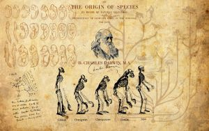 Charles Darwin Wallpaper by kinepipe