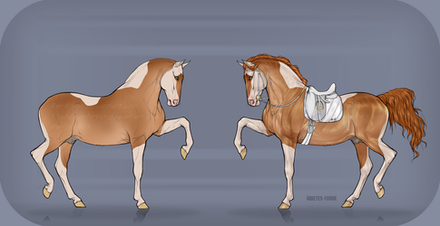 Equine Adopt Auction [OPEN] by TheAdoptArtist