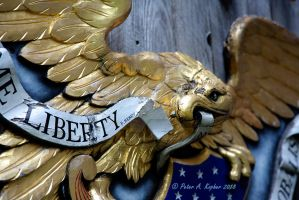 Liberty  by peterkopher