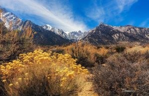 Mt Whitney by tassanee