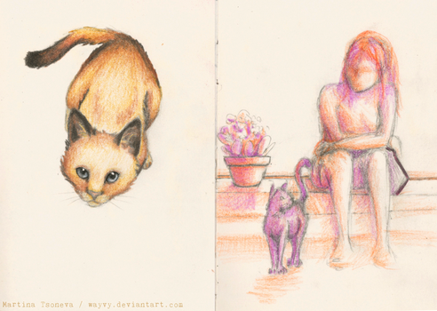 Catssketches by Wayvy
