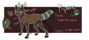 Ravine 2012 ref (updated) by LittleRavine