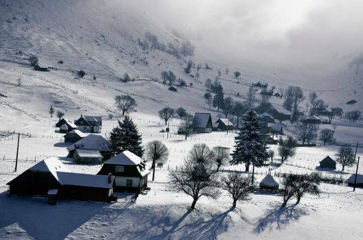 Cold day at Sirnea village by artfoto
