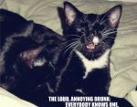 LOLCats by Selfish-Eden