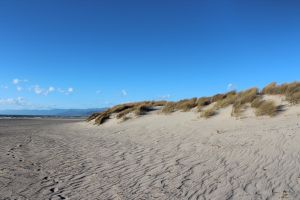 Sand Dune Five by GhostlyHallow