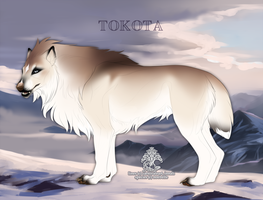 Tiilaqiia 16165 by TotemSpirit