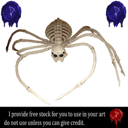 Bone Spider by Prince-of-airbrush