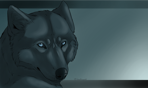 Wolf's Rain ~ Blue by swiftywolf