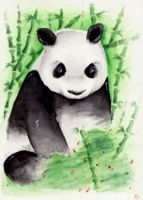Giant Panda - ACEO 102 by Arthay