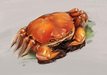 Hairy crabs by superschool48