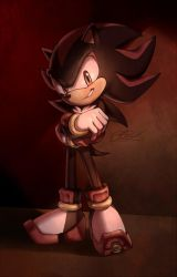 Shadow the hedgehog by Suncelia