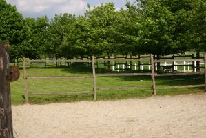Equestrian Facilities Paddock Stock by LuDa-Stock