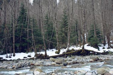 Canadian Creek II by editordistriktmag