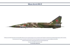MiG-25 USSR 3 by WS-Clave