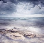 Premade Background  974 by AshenSorrow