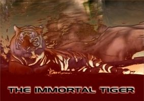 The Immortal Tiger by SouthernDesigner