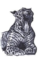 Jaguar by Alvin-and-the-wild