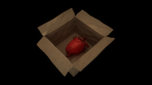 Heart in a box by JoaoYates