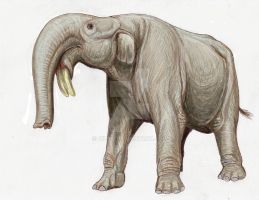Deinotherium from Rostov by DiBgd