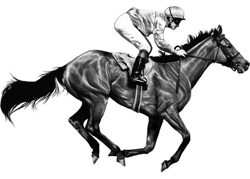 Racehorse Greyscale by wideturn