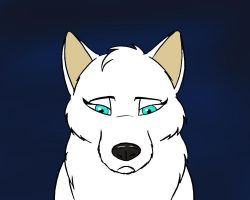 Sad white wolf by TonyCrynight