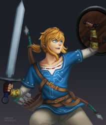 Link by Hector-Monegro