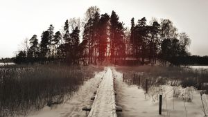 Trail to the island, revisited by Pajunen
