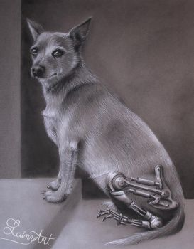 Terminator Chihuahua - Charcoal commission by secrets-of-the-pen