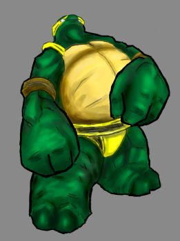 The 5th Forgotten Ninja Turtle by Ca2los