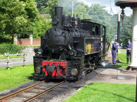 Foreigner at Welshpool by rh281285